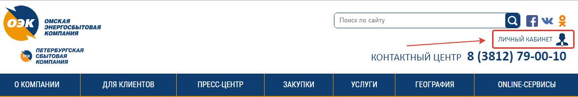 lk-omsk-energosbyt-company